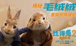 """《比得兔2:逃跑计划》发""""毛绒绒炼成记""""制作特辑 让可爱渗透到每一根毛发"""