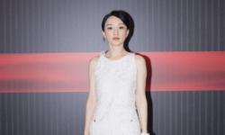第十五届FIRST青年电影展发布会北京举行  周迅担任电影市场终审