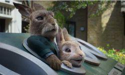 电影《比得兔2:逃跑计划》上映  比前作评分更高的续集