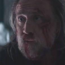 尼古拉斯·凯奇主演电影《救猪行动》北美定档