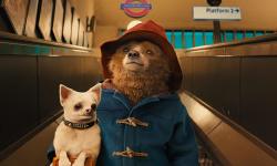 真人版《帕丁顿熊3》将于2022年第二季度开拍