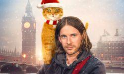 《流浪猫鲍勃2:鲍勃的礼物》定档8月6 鲍勃猫延续最后的温暖