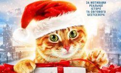 《流浪猫鲍勃2:鲍勃的礼物》今日上映,这只橘猫值得最佳主角奖!