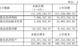 大晟文化2021年上半年净利798.65万下滑77.16% 子公司人工成本增加