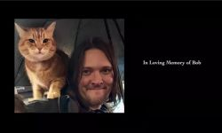英国电影《流浪猫鲍勃2:鲍勃的礼物》热映  网红橘猫惹人爱
