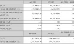 星辉娱乐2021年半年度亏损1.97亿元 同比亏损增加348.28%