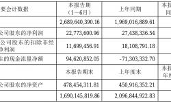 引力传媒2021年半年度净利2277.36万元 同比净利减少17.00%