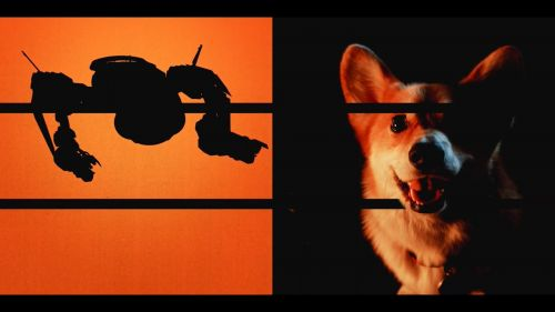 Netflix真人剧集《星际牛仔》将于11月19日开播第一季共10集